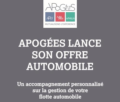 Lancement référencement automobile